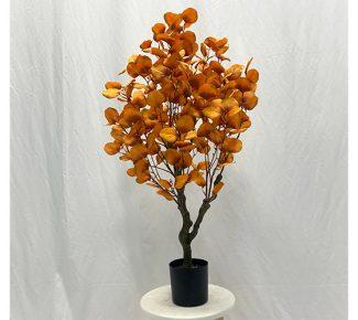 עציץ אקליפטוס זהב 90 ס