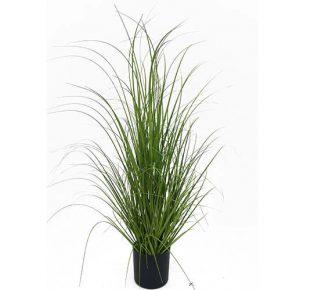 עציץ דשא מדורג 5061