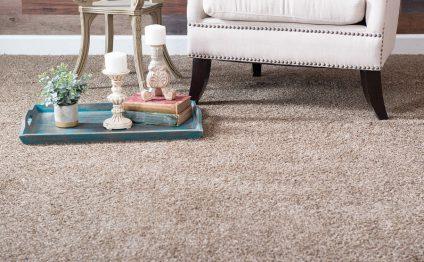 כל מה שצריך לדעת על ניקוי שטיחים ותחזוקה